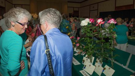 Rose Show Attendees